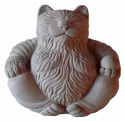 Cat called Buddha