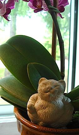Mini Cat Buddha